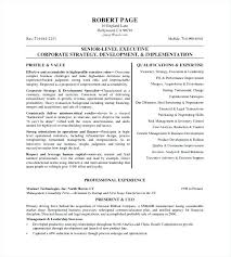Ceo Resume Samples Inspiration Sample Resume Of Executive Assistant To Ceo Also Resume Of An