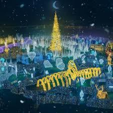 Christmas Light Displays In Tampa Christmas Lightshow Spectacular Joyride Tours Llc Joyride