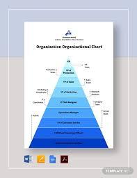 Organizational Chart 17 Free Word Pdf Documents Download