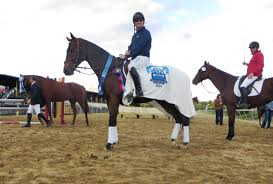 icabad crane moving up eventing ladder quickly under dutton phillip dutton and icabad crane took top honors as america s most wanted thoroughbred in 2014