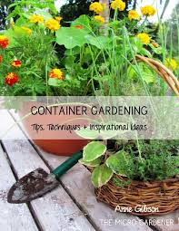 Small Picture 1597 best Gardening images on Pinterest Gardening Products and Ph