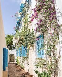 تونس الخضراء - Bluezznation