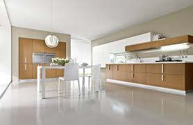 Indian Kitchen Interiors Kitchen Cabinets Design Photos Wall Unit Designs Indian Kitchen