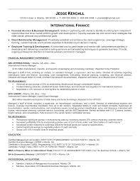 international resume international business cv international resume template inventory specialist resume templates international