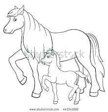 Breyer Horse Coloring Pages Horse Coloring Pages Fresh Coloring