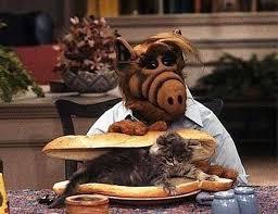 Les chatons tout mignon Images?q=tbn:ANd9GcQ7prh8nNg7dmQrQxmAinUs2YUCyVk-BJkenK-AVjlv4oXRfWxw