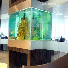 fish for office. Bespoke Glass Wall Aquarium; Office Fish Tank For