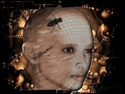 Digital portraits/Viso-donna-mosca