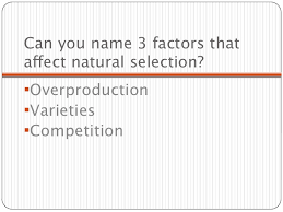natural selection review ppt overproductionvarieties 10 can you 3 factors thataffect natural selection