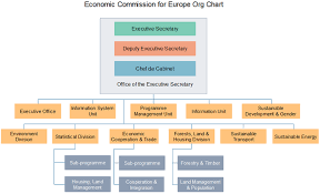 Standard Org Chart Unece Org Chart Learn About Un Economic Commission For Eu