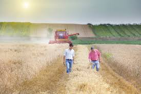 What Goes In A Farming Partnership Agreement? - Robson & Liddle