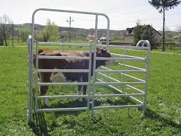 Sheep Corral Design Livestock Gate Corral For Cows For Pigs Zaklady