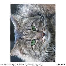 Eye Cat Design Fluffy Green Eyed Tiger Kitty Cat Jigsaw Puzzle Zazzle Com