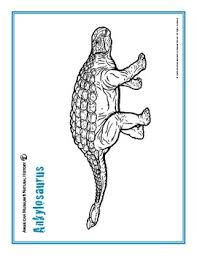 Displaying 67 realistic printable coloring pages for kids and teachers to color online or download. 12 Free Dinosaur Coloring Pages Of Real Dinosaurs By Cool Teaching Stuff