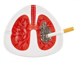 Image result for lungs and smoking