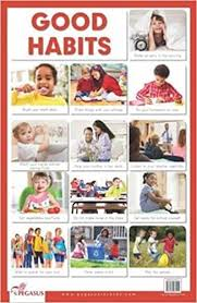 Buy Good Habits Thick Laminated Primary Chart Book Online