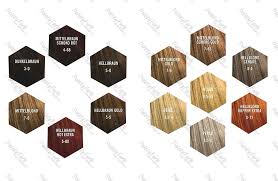 Photographs Goldwell Colour Mousse 1aled Borzii