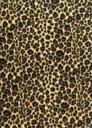 Leopard Print Wallpaper Bedroom 48 Units Of Leopard Print Wallpaper