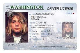 Buy Buy License Drivers Fake Fake