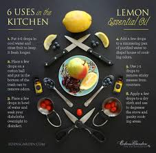 Uses Of Kitchen Garden Lemon Single Oils Edens Garden