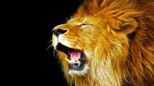 Lion Wallpaper Desktop - KoLPaPer ...
