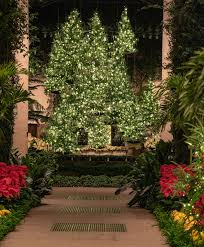 kennett square pa this year a longwood pays homage to the tree with an imaginative display featuring traditional favorites and