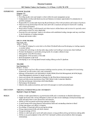 Sample Traders Resume Trader Resume Samples Velvet Jobs 8