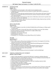 trader resume sample as image file