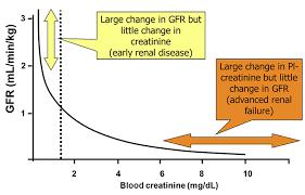 Creatinine Chart By Age Iris Kidney Education Creatinine In Dogs