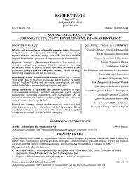Gallery Of 10 Ceo Resume Templates Free Word Pdf Resume Examples