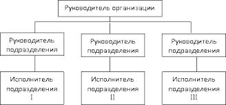 Структура персонала современной организации Реферат Линейная структура персонала