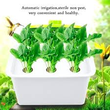 hydroponic home garden home hydroponic system garden hydroponics gardening plant pot hydroponic systems hydroponic home food gardens pdf