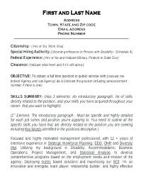 Resume Skills Samples Fascinating Sample Resume Summary Of Qualifications Retail Qualification For