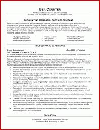 Awesome Accountant Cv Summary Wing Scuisine
