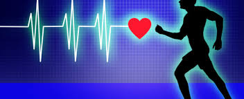 Image result for Cardiovascular Conditioning