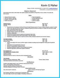 Examples Of Professional Resumes Magnificent Credit Analyst Resume Sample Httpresumesdesigncredit