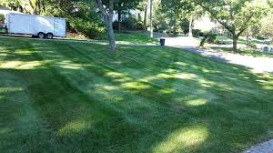 admirable chem lawn applied to your home concept chemlawn trugreen rapid city sd