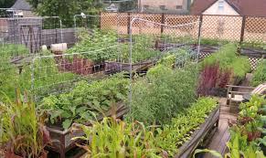 Small Picture Fine Terrace Garden Ideas Bangalore Designs D Inside Inspiration