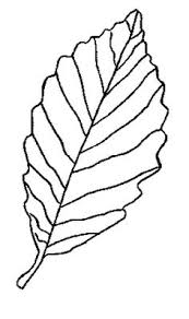 Small Picture Free Fall Leaf Coloring Pages for Family Road Trips Car trip