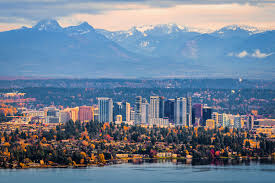 Image result for bellevue