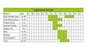 Madison River Hatch Chart