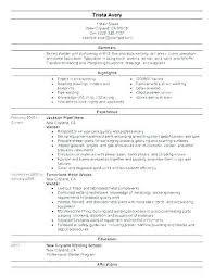 Welder Resume Interesting Welder Resume Sample Welder Resume Captivating Welding Resume