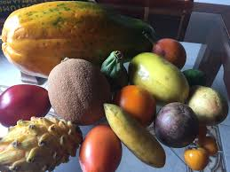 tropical fruits of colombia