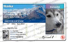 Id Alaska License Pet License Pet Alaska Id