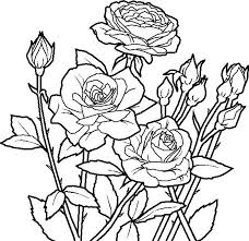 Coloring Pages Roses And Hearts Free Printable Adult Coloring Pages