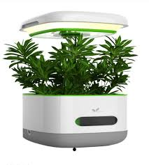 Indoor Grow Box With Lights 2018 New Style Led Light Box And Garden Indoor Growing Light Buy Garden Indoor Light Box Hydroponic Indoor Garden Pot Grow Box Hydroponic System