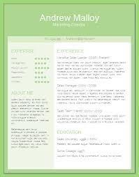 Download Editable Word Resume Templates Cv Template Word