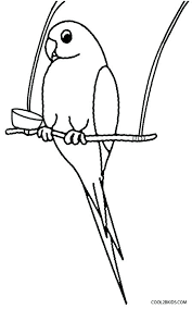 Small Picture Parrot Coloring Pages Free Budgerigar Parrots vonsurroquen
