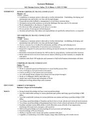 Traveling Consultant Sample Resume Corporate Travel Consultant Resume Samples Velvet Jobs 8