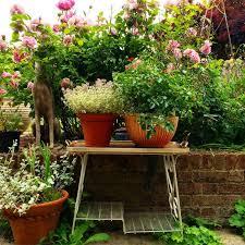 Container Gardening Magazine Uk Ideas Home Inspirations Gardens Container Garden Ideas Uk